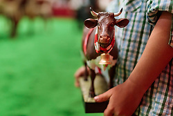 29.04.2018, Maishofen, AUT, XII Weltkongress Pinzgauer Rind, im Bild Trophäe Pokal // Trophy Cup during the XII Pinzgauer cattle World Congress in Maishofen, Austria on 2018/04/29. EXPA Pictures © 2018, PhotoCredit: EXPA/ JFK