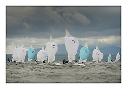 470 Class European Championships Largs - Day 3.Brighter conditions with more wind..Men's Fleet Downwind, with RUS7, Vladimir CHAUS, Denis GRIBANOV, Krasnodar Reg. .