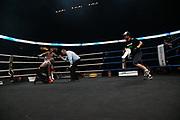 Boxen: Big Deal, Cruisergewicht, IBO International Titel und die WBO-EM, Hamburg, 19.05.2017<br /> Mario Daser (GER, blaue Hose) - Ola Afolabi GBR, schwarze Hose)<br /> © Torsten Helmke