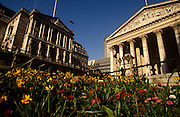 "Spring flowers grow in the beds at Bank Triangle, beneath the pillars of the Bank of England and Cornhill. We see from a low angle, alongside the level of the flowers, the Corinthian pillars of Cornhill Exchange on the right and the higher Bank on the left. The Bank of England is the central bank of the United Kingdom. Sometimes known as the ""Old Lady"" of Threadneedle Street, the Bank was founded in 1694, nationalised on 1 March 1946, and in 1997 gained operational independence to set monetary policy."