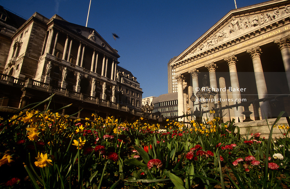 """Spring flowers grow in the beds at Bank Triangle, beneath the pillars of the Bank of England and Cornhill. We see from a low angle, alongside the level of the flowers, the Corinthian pillars of Cornhill Exchange on the right and the higher Bank on the left. The Bank of England is the central bank of the United Kingdom. Sometimes known as the """"Old Lady"""" of Threadneedle Street, the Bank was founded in 1694, nationalised on 1 March 1946, and in 1997 gained operational independence to set monetary policy."""
