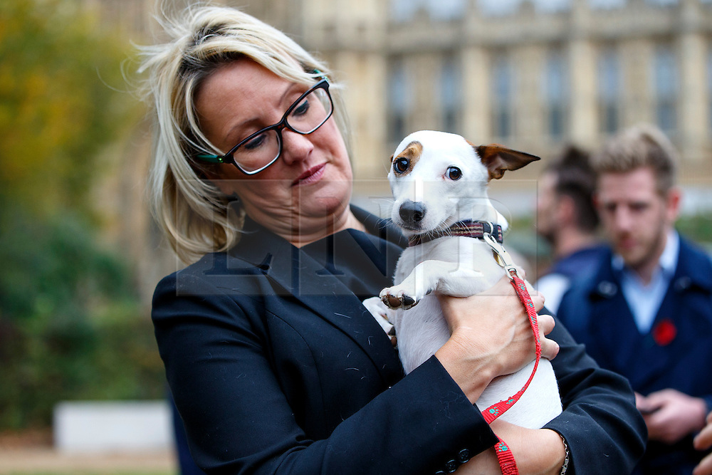 © Licensed to London News Pictures. 29/10/2015. London, UK. Conservative MP Caroline Dinenage and her dog Miss Flea taking part at Westminster Dog of the Year competition in Victoria Tower Gardens in London on Thursday, 29 October 2015. Photo credit: Tolga Akmen/LNP