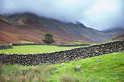 Sculptural dry stone wall and low cloud in popular tourist site Burnthwaite at Wasdale Head, the Lake District, Cumbria, England, UK