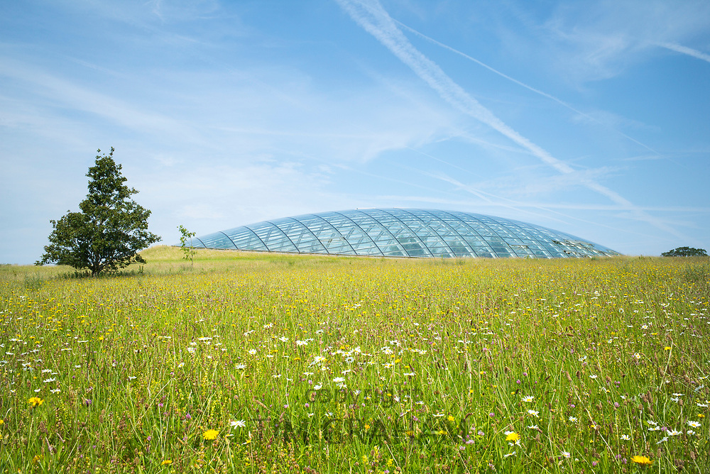Dome shaped glass roof of The Great Glasshouse of the National Botanic Garden of Wales and wildflower meadow in Carmarthenshire, UK
