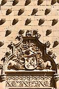 Stone carving of Casa de las Conchas, House of Shells, now public library in Salamanca, Spain