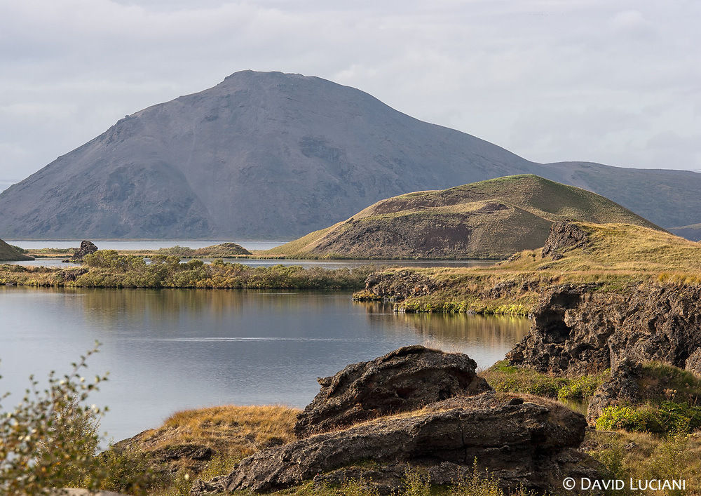 Lake Mývatn was formed 2300 years ago by a basaltic lava eruption which flows out of a large fissure. In earlier times, approximately 10000 years ago, it was permanently covered by an icecap. Today the area is famous for the rich fauna, expecially birdlife. Another spot is the Laxá river, which is very popular (and expensive) for salmon fishing. Brown trouts are also abundantly found in the clear river.