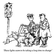 'These lights seem to be taking a long time to change'