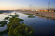 Los Angeles River with waterfowl, south of downtown Los Angeles. Bell, Los Angeles, California, USA