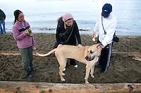 and one huge dog