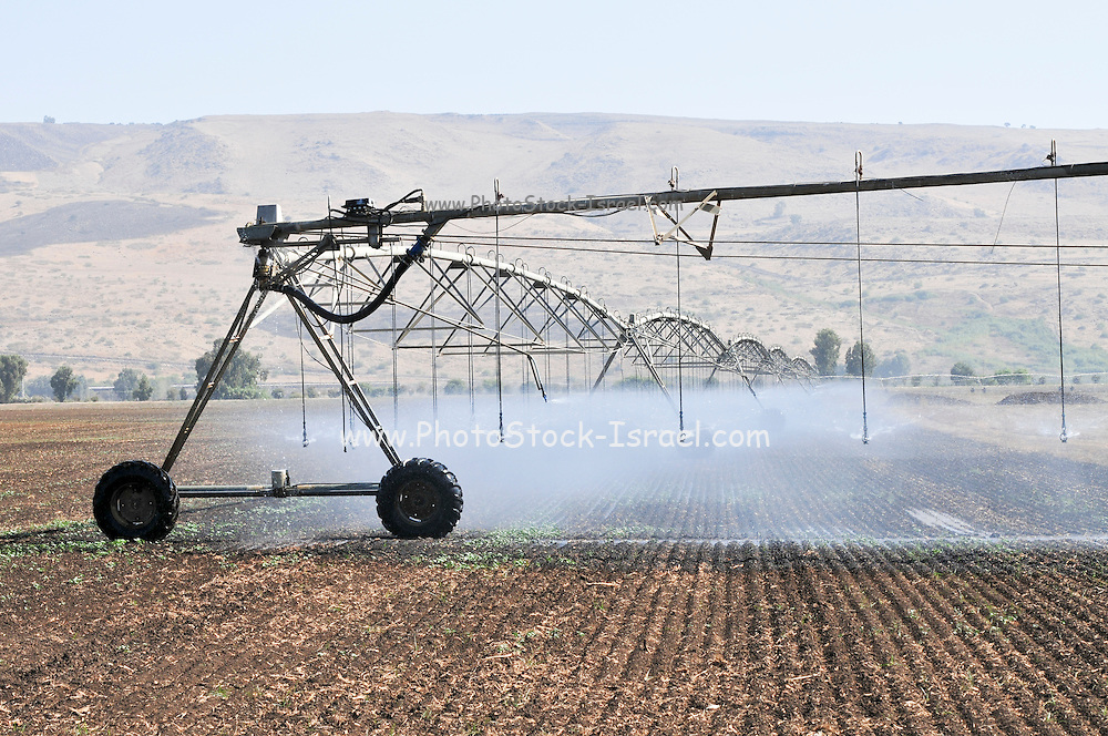 Israel, Hula Valley, Irrigation robot watering a field