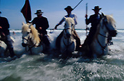 Europe, France, Camargue, Saintes Maries de la Mer, Gypsy Pilgrimmage 'Pelerinage des Gitans aux Saintes Maries de la Mer'. 'Les Gardians Camargaises' on horseback in the surf during a procession. Gypsies from all over the world come to celebrate their patron Saint Sara who is carried by them from the church to the sea-shore. May 24th and 25th every year.