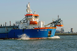 HAM 316, 9160449, Hopper dredger, Hoek van Holland, Rotterdam, Netherlands