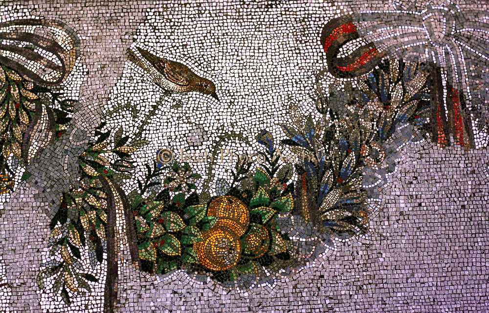 Floor Mosaic with Depiction of a Parakeet From the Altar chamber in Palace V on the Acropolis Made of natural stone, ca. 150 BC.