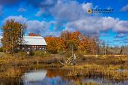 Old Barn reflects in wetlands near Munising, Michigan, USA