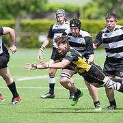 20160508 Rugby, Under 18 : Petrarca Padova vs Viadana