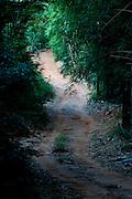 Domingos Martins_ES, Brasil...Trecho da Rota imperial da Estrada Real, antiga estrada de Dom Pedro de Alcantra...Ancient Rota Imperial, know as Dom Pedro de Alcantara road...Foto: LEO DRUMOND / NITRO