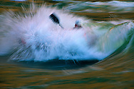 Kayaker surfing in the colorado river