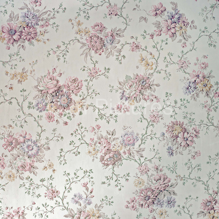 Pink and white rose patterned wall paper on an estate cottage wall, Newby Hall estate and gardens, Ripon, North Yorkshire, UK