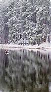 Snow Storm, Bear Lake, Rocky Mountain National Park