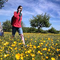 Nederland, Sint Geertruid, 14 mei 2015.<br /> Deelnemers aan de Margraten wandeltocht lopen dit jaar ook door hoogstamboomgaarden van Libeek.<br /> <br /> <br /> Foto: Jean-Pierre Jans