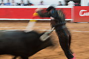 A show shutter shows the action as Mexican Matador thrusts banderillas into a bull during a bullfight at the Plaza de Toros in San Miguel de Allende, Mexico.