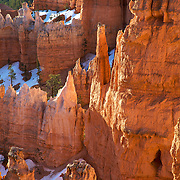 Bryce Canyon National Park in Southern Utah is distinctive due to geological structures called hoodoos, formed by wind, water and ice erosion of the river and lake bed sedimentary rocks. The red, orange and white colors of the rocks provide spectacular vistas for park visitors.