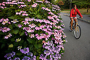 Bike riding on the coastal trail along Stanley Park, Vancouver, British Columbia, Canada.  (model released)