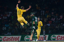©London News Pictures. 19/03/2011.Brett Lee celebrates his second wicket in a row getting Misbah-ul-Haq out for a duck at R.Premadasa Stadium Colombo Sri Lanka