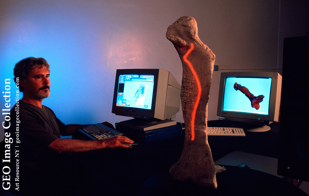 An engineer scans a dinosaur bone from Sue T-Rex with a laser device to measure it.
