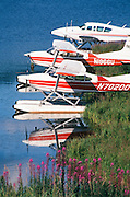 Alaska. Homer. Seaplanes in Homer.