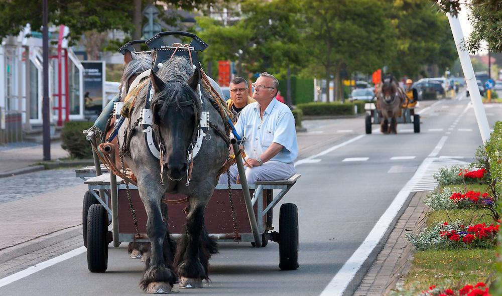 Shrimpfisher-men on horseback.<br /> Oostduinkerke<br /> Belgium