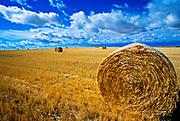 Hay bale in field near Great Falls Montana