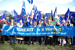 Campaigners demanding the UK stays in the EU staged a rally outside the Scottish Parliament 24032018 pic copyright Terry Murden @edinburghelitemedia 07971 686038