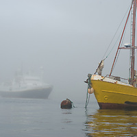 Fog envelops a fishing boat and the geo-tourism ship National Geographic Endeavor at West Point Island in Britain's Falkland Islands.