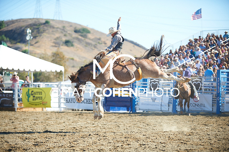 Saddle bronc rider John Redig of Casper, WY rides -Q24 Forked Up at the Rancho Mission Viejo Rodeo in San Juan Capistrano, CA.<br /> <br /> <br /> UNEDITED LOW-RES PREVIEW<br /> <br /> <br /> File shown may be an unedited low resolution version used as a proof only. All prints are 100% guaranteed for quality. Sizes 8x10+ come with a version for personal social media. I am currently not selling downloads for commercial/brand use.