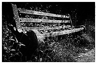 Bench in Solva South Wales