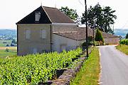 The Chateau Pavie Decesse on a private road Saint Emilion Bordeaux Gironde Aquitaine France