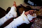 Syria's Tortured Civilians