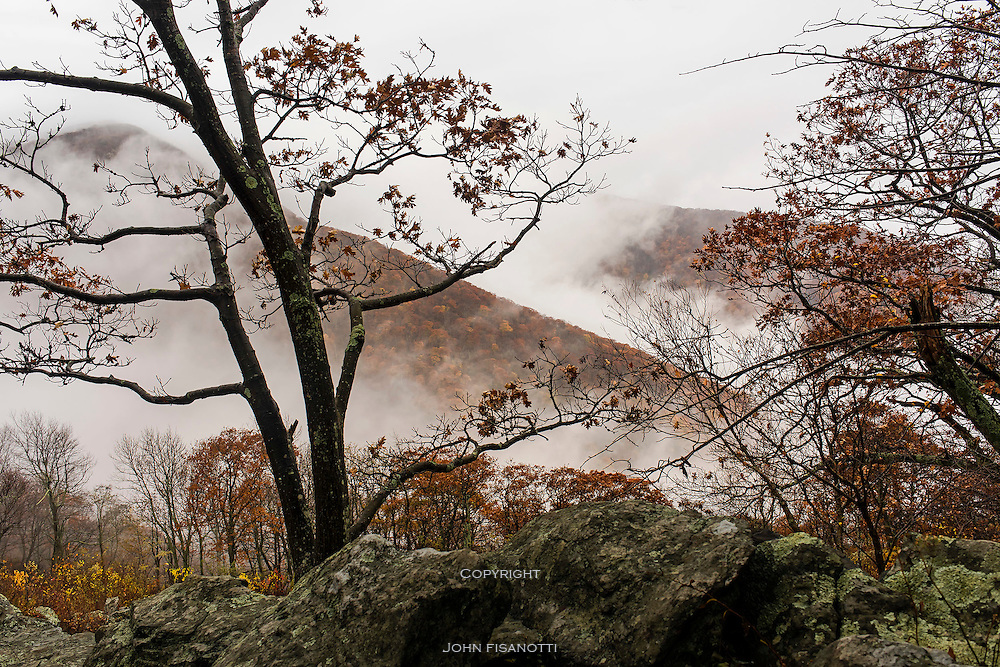 A Fall Day in Shenandoah National Park.