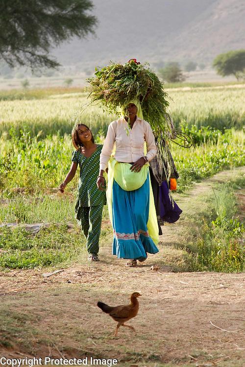 Indian woman in small village. Photography by Debbie Zimelman, Modiin, Israel.