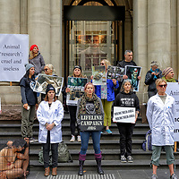 Rally advocating for end of the use of animals in laboratories held on Saturday April 27 2019 in the city of Melbourne Australia.