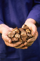 A handful of bark chippings