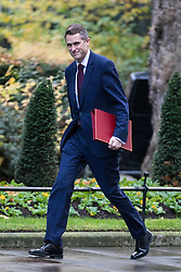 © Licensed to London News Pictures. 28/11/2017. London, UK. Defence Secretary Gavin Williamson arrives on Downing Street for the weekly Cabinet meeting. Photo credit: Rob Pinney/LNP