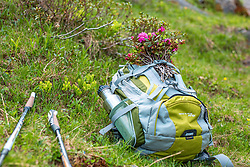 THEMENBILD - ein Alpenrosenstrauß ist auf einem Rucksack festgebunden. Wanderstöcke liegen daneben auf einer Bergwiese, aufgenommen am 01. Juli 2019, Kaprun, Österreich // a bouquet of alpine roses is tied to a backpack. Hiking poles lie next to it on a mountain meadow on 2019/07/01, Kaprun, Austria. EXPA Pictures © 2019, PhotoCredit: EXPA/ Stefanie Oberhauser