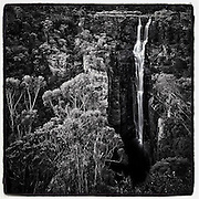 Carrington Falls, a spectacular waterfall near Jamberoo in the Budderoo National Park drops 50 metres down into a gorge into Kangaroo Valley. NSW, Australia