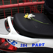 Flowers placed on the back of a police motor bike by protesters during the Occupy Brooklyn March over the Williamsburg Bridge, New York, USA. 1st May 2012. Photo Tim Clayton
