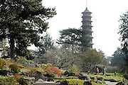 © Licensed to London News Pictures. 22/03/2012. Kew, UK. A view of the Japanese Pagoda through the Japanese Garden. People enjoy the spring sunshine in The Royal Botanic Gardens at Kew today, 22 March 2012. Temperatures are set to reach 18 degrees celsius in some parts of the UK today. Photo credit : Stephen SImpson/LNP