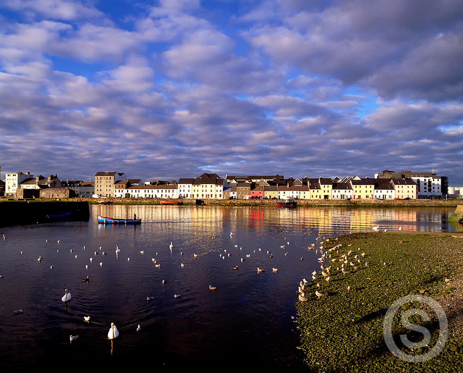 Photographer: Chris Hill, Galway City