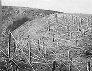 Russo-Japanese War 1904-1905:  Russian barbed wire entanglements.