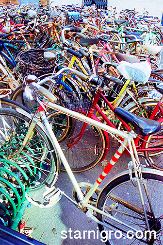 Bicycles outside of train station in Venice, Italy, A great example of green living.<br /> <br /> <br /> photo by Star Nigro<br /> <br /> ©2021 All artwork is the property of STAR NIGRO.  Reproduction is strictly prohibited.<br /> <br /> starnigro.com